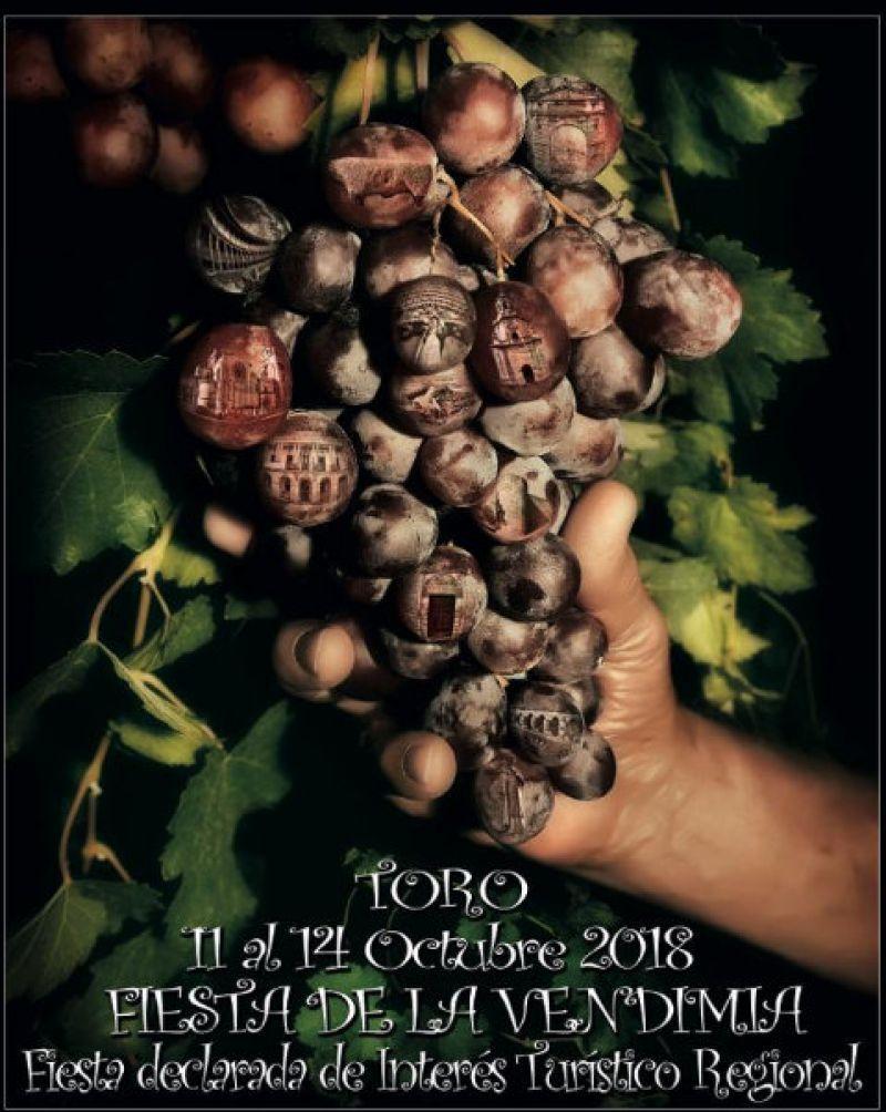 La Fiesta De La Vendimia De Toro Se Celebra Del 11 Al 14 De Octubre Zamora News Tu Periodico Digital En Zamora