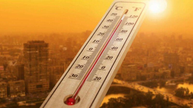 Enero fue el mes más caliente de la historia — Cambio climático