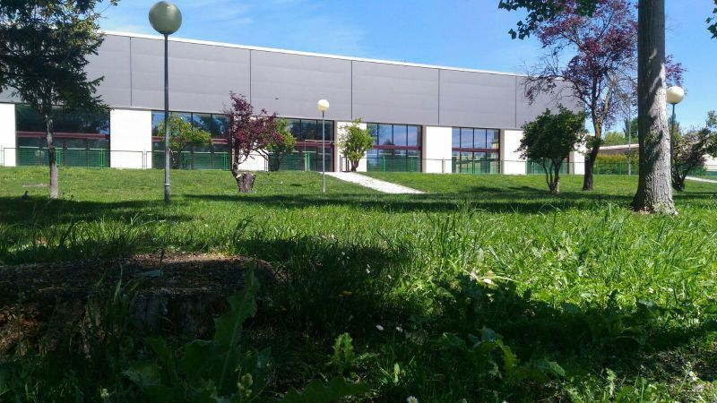 Renovado todo el c sped del recinto exterior de la piscina for Piscina sindical zamora